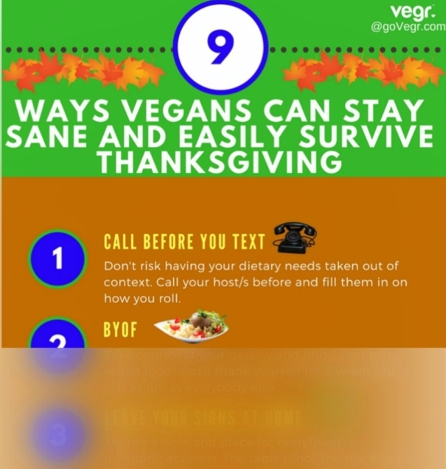 Vegan Thanksgiving Infographic