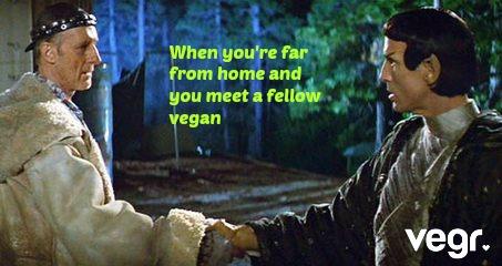 meet other vegans