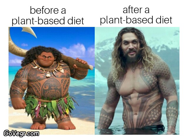 benefits of a plant based diet