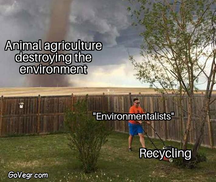 effects of veganism on the environment