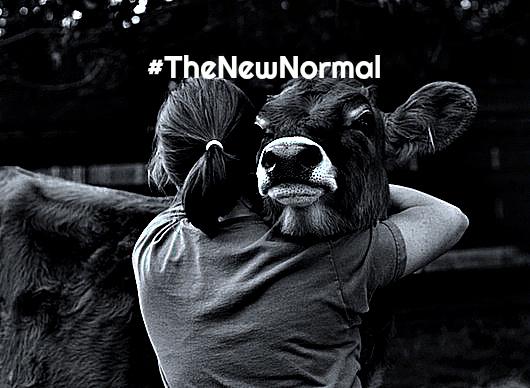 #TheNewNormal