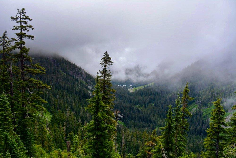 // Snow Lake | Mount Rainier