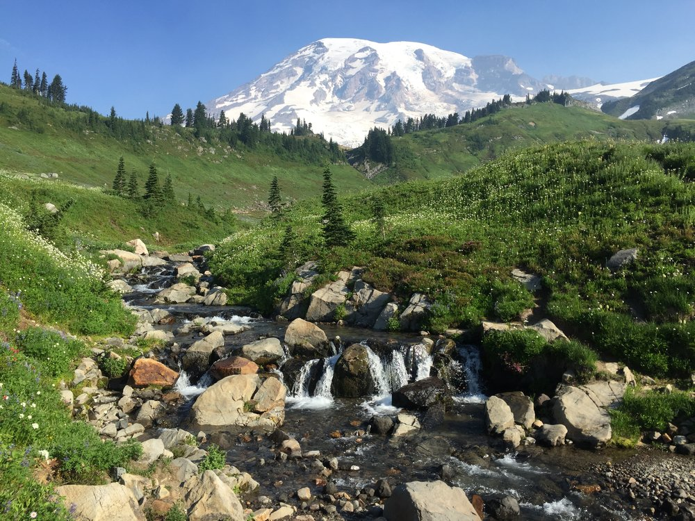 Edith Creek | Mount Rainier National Park