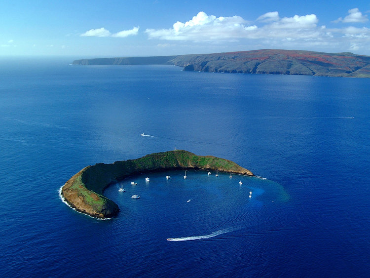 Molokini-Crater-Tour.jpeg