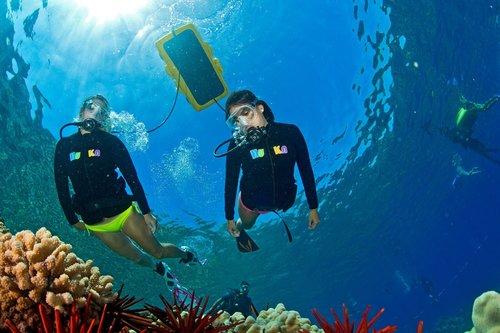 Molokini Snorkel Tours