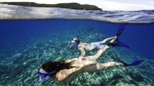 Molokini-Snorkel-Gear.jpg