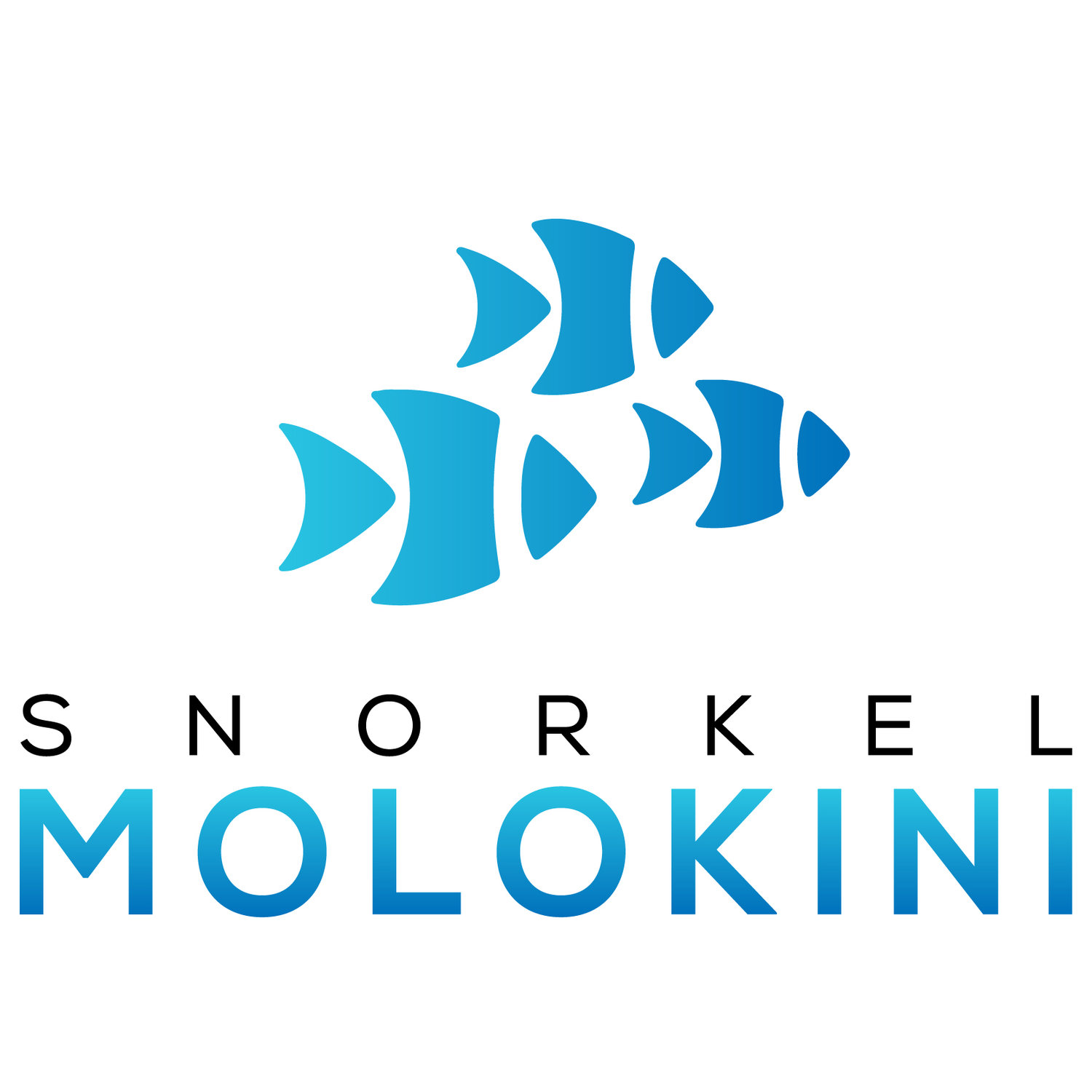 Snorkel Molokini - The Molokini Crater on Maui - Book Now!