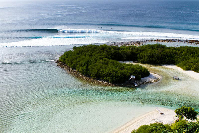 Sprout_Daily_Maldives_Trip_2015.jpg