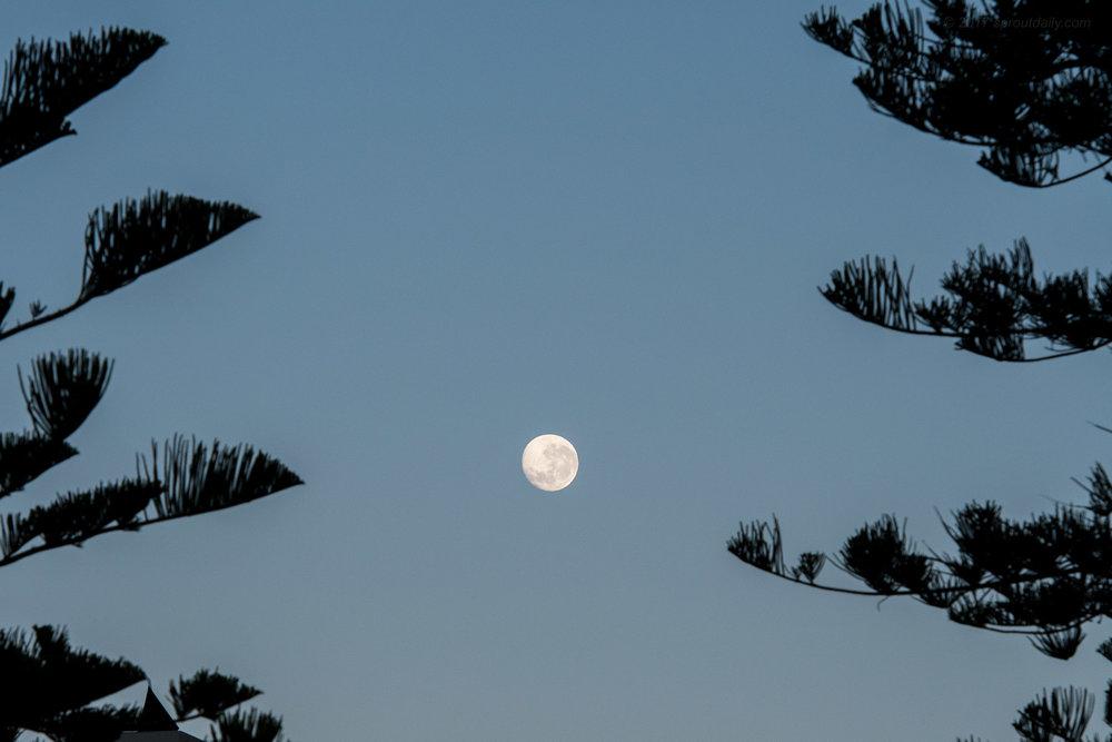 Luna Frame