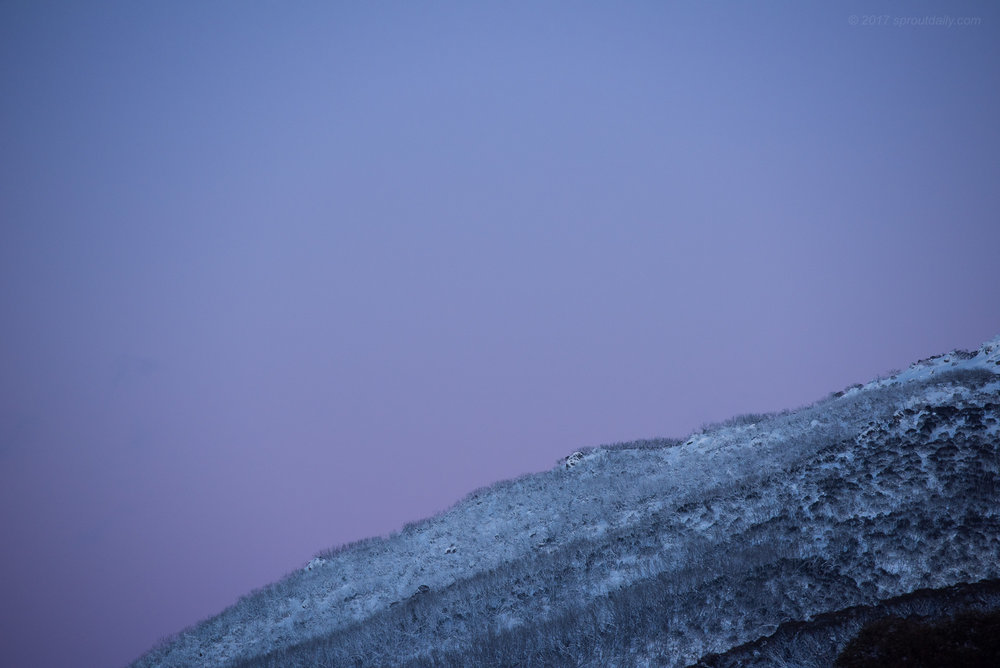 7am Yesterday at Thredbo Carpark (just before I put my camera away and hit it!)