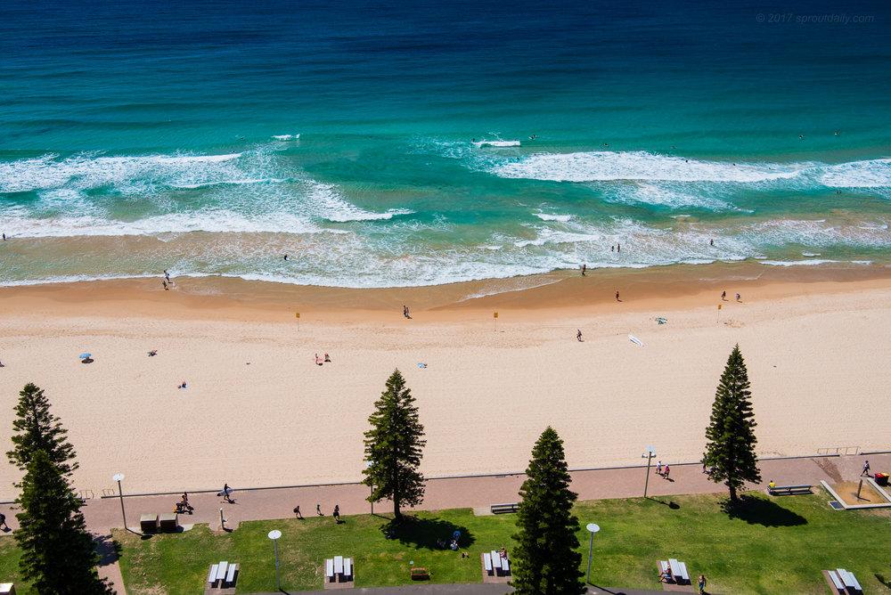 Lawn Sand Sea