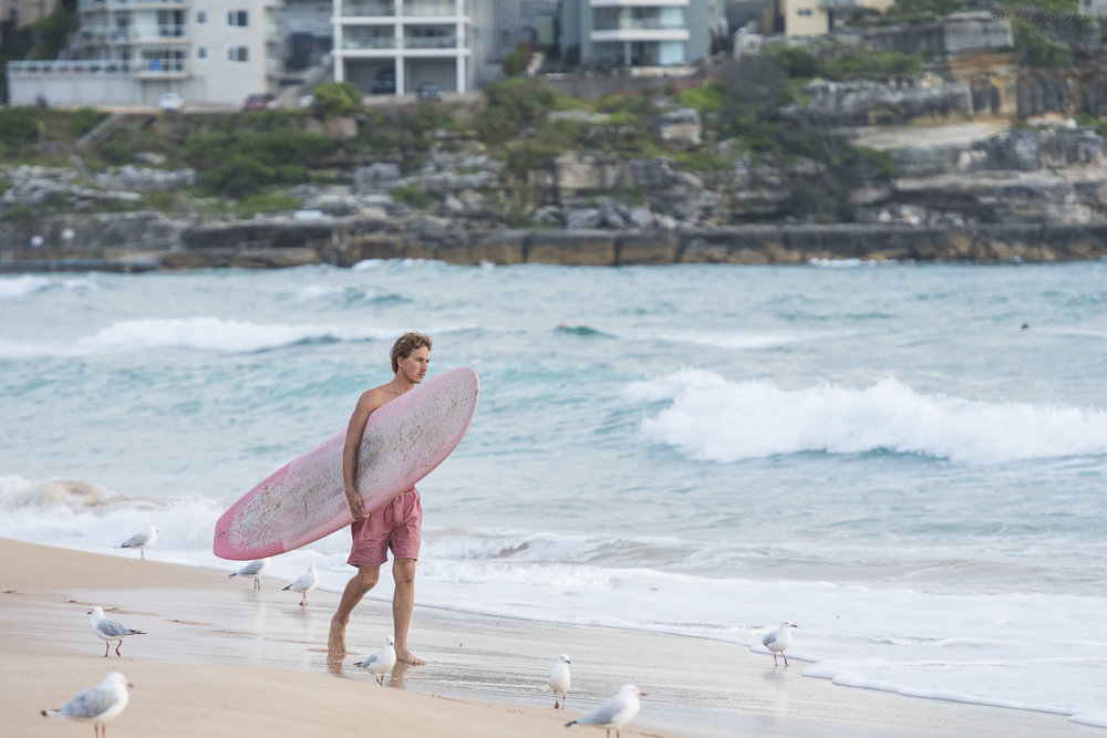 Just a bloke with a pink board & pink shorts walking with the seagulls