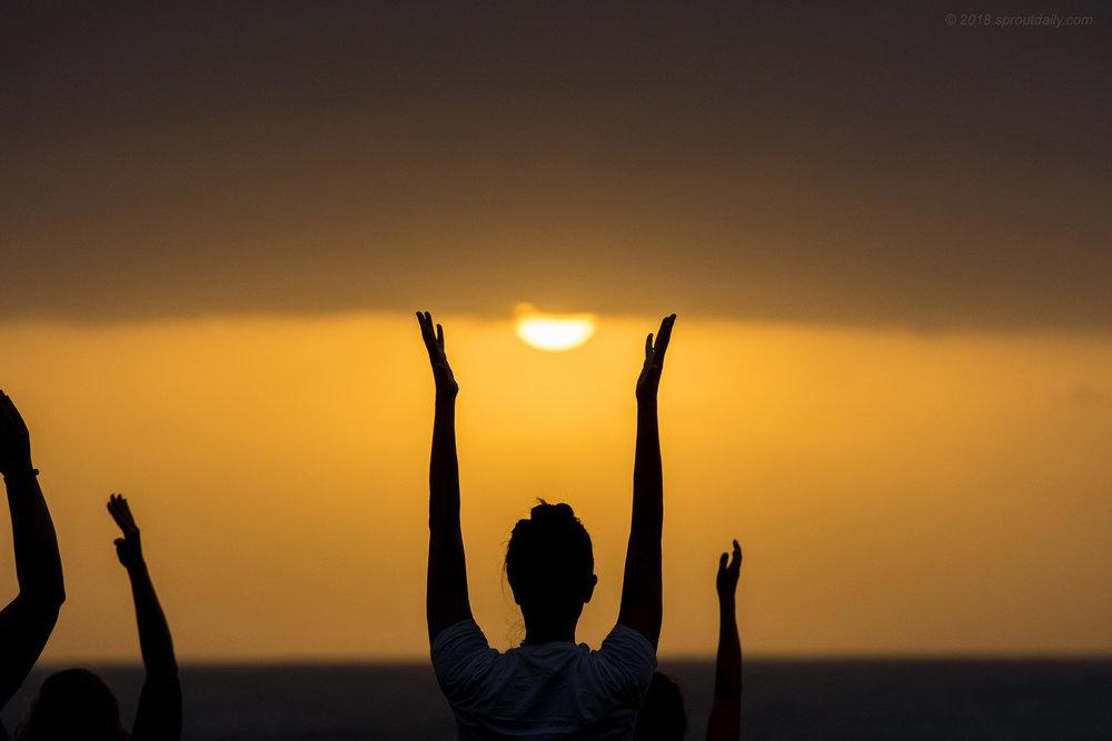 Salute Da Sun