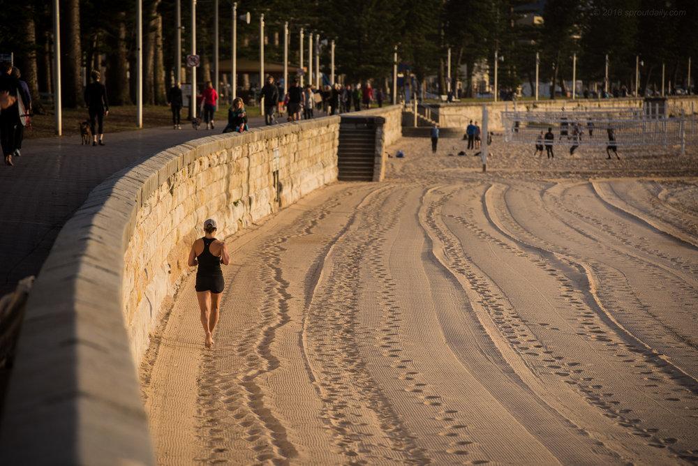 Sandstone Tracks