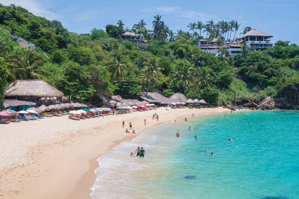Playa Carrizalillo - A slice of paradise just around the corner!