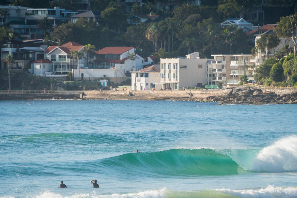 Meanwhile in Manly…