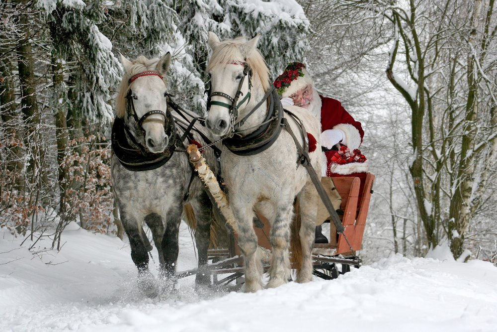 christmas-2949687_1920.jpg