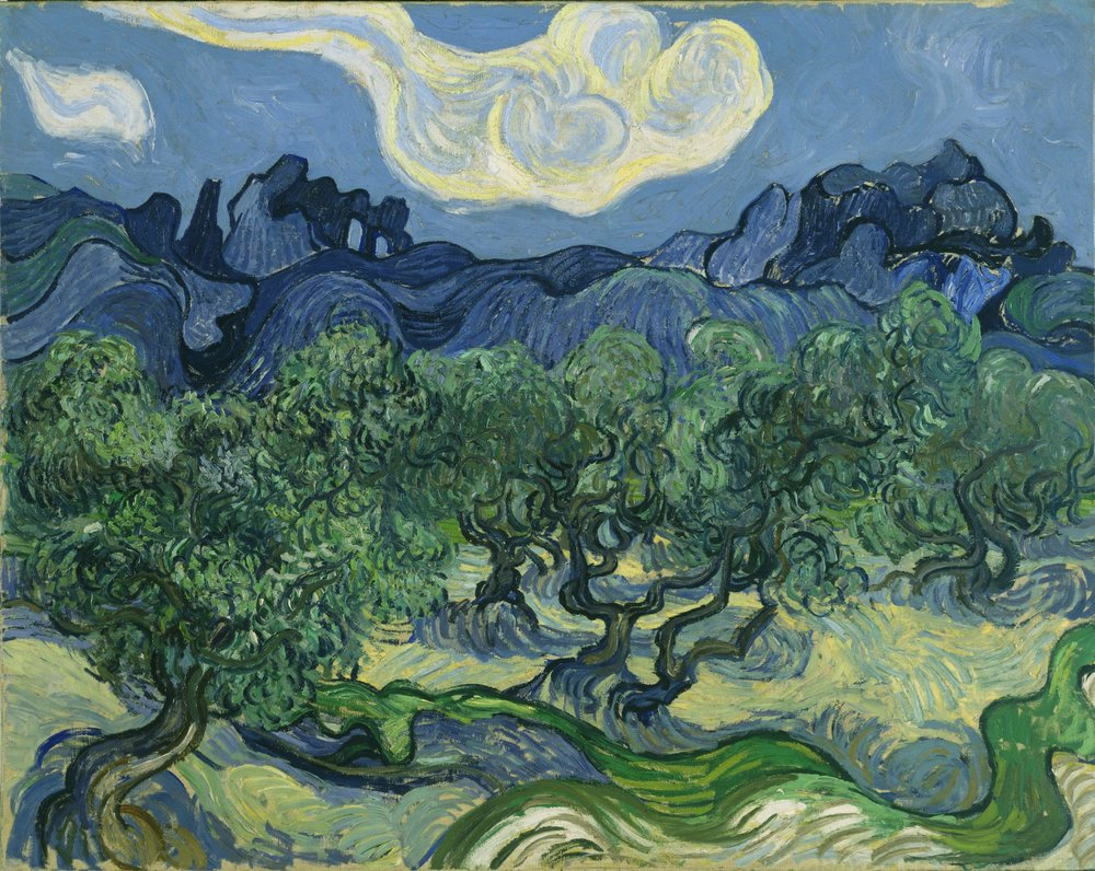 The Olive Trees by Vincent Van Gough
