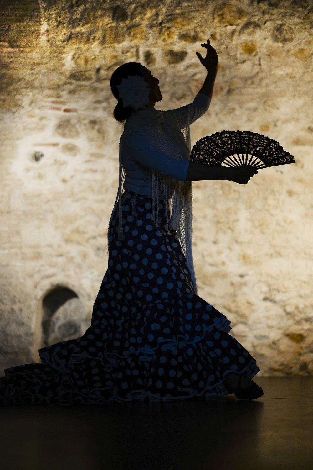 flamenco-fan.jpg