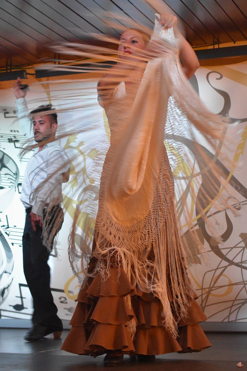 flamenco-1641315_1920.jpg