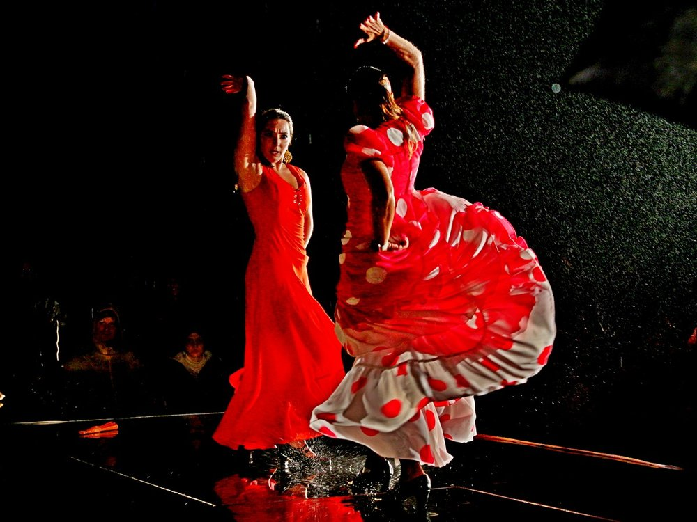 Flamenco_im_Regen.jpg