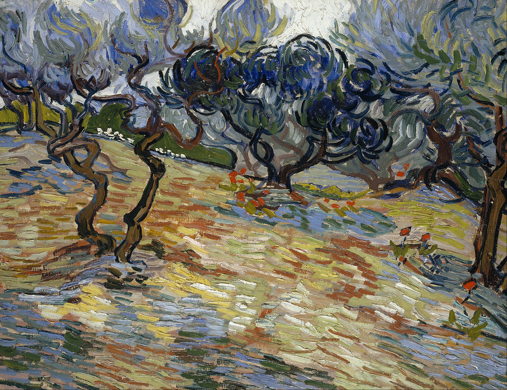 Vincent_van_Gogh_-_Olive_Trees_-_Google_Art_Project.jpg