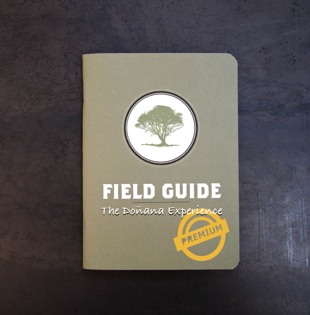 Donana Field Premium Cover.jpg
