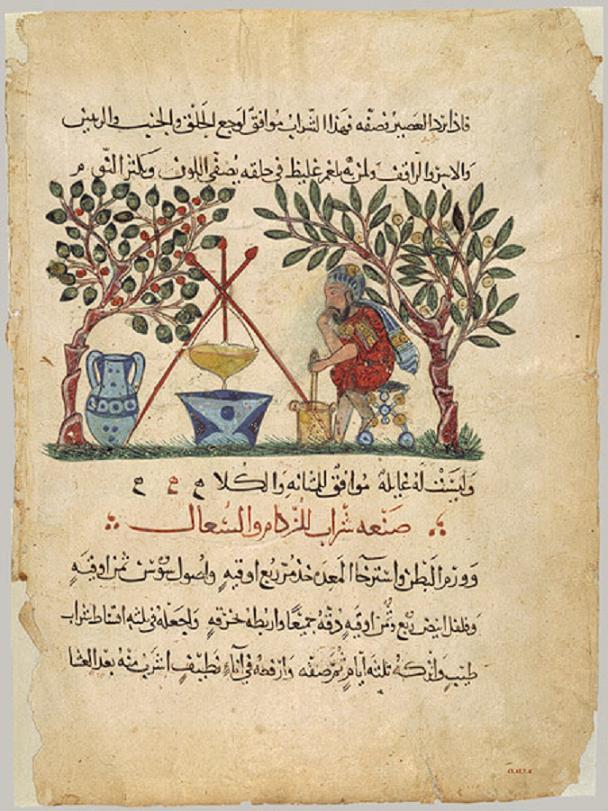 Arabic translation of Dioscorides De Materia Medica, 32 x 21 cm, Baghdad, 1224 CE