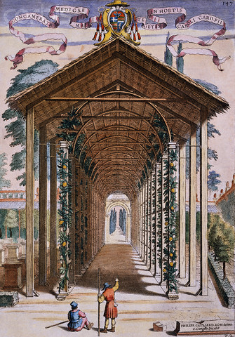 Engraving of an Italian Orangerie by Gio. B. Ferrari. From his 18th c.