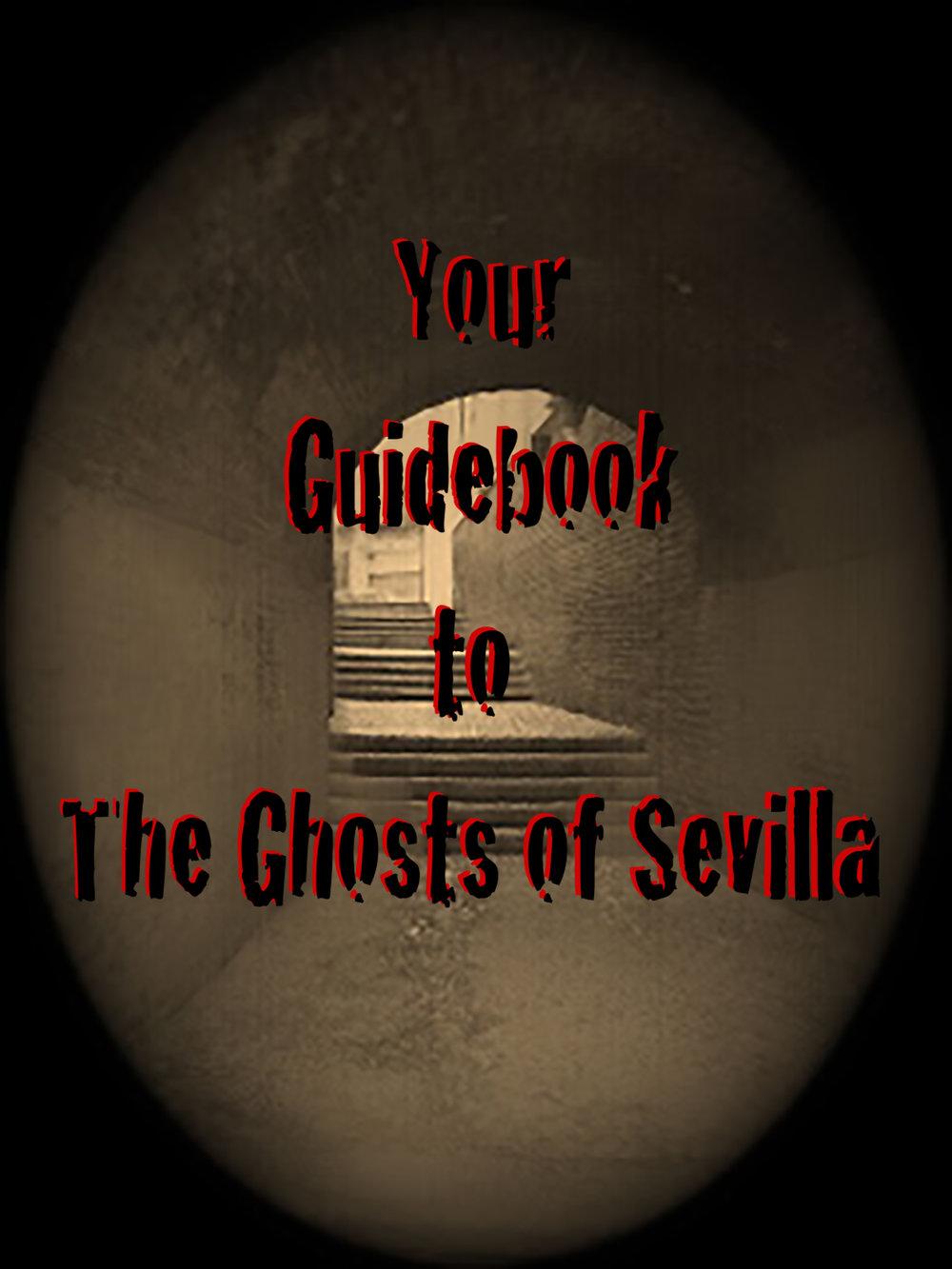 Guidebook cover.jpg