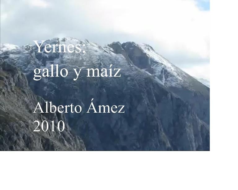 Alberto Amez. Gallo y maiz. 2010.jpg