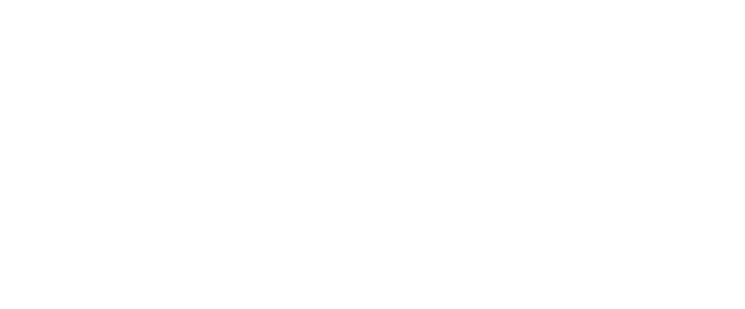 the television and movie store