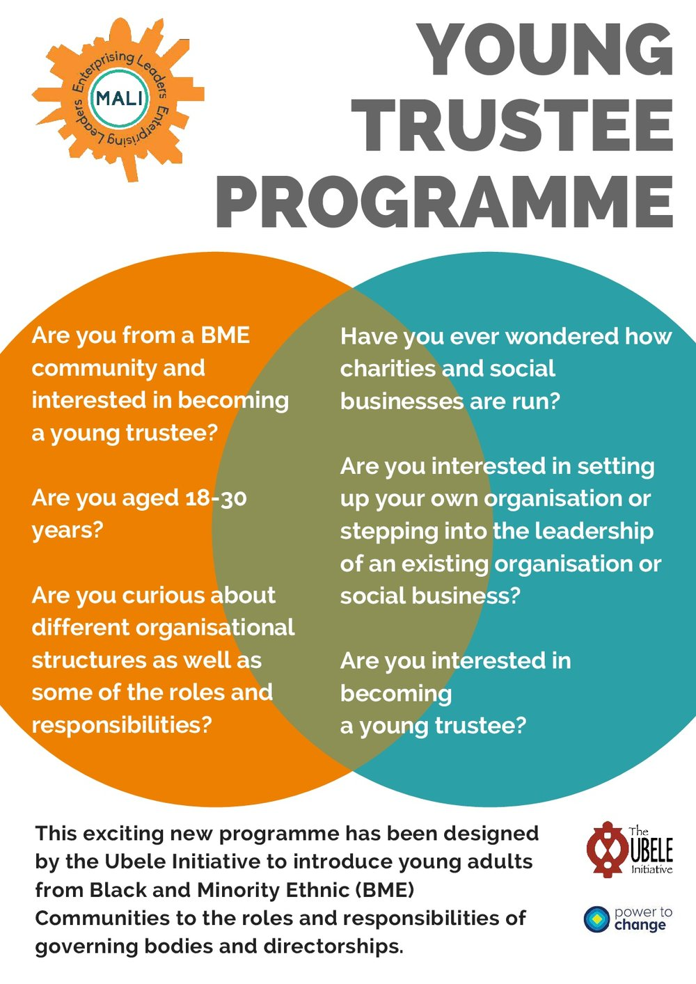 Young-Trustee-Programme-flyer-001.jpg