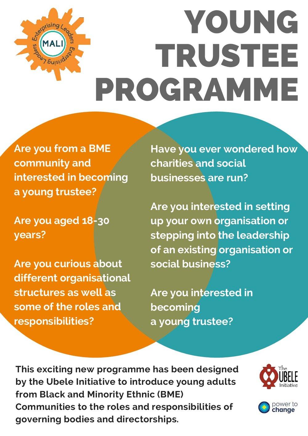 Young-Trustee-Programme-flyer-001.jpg
