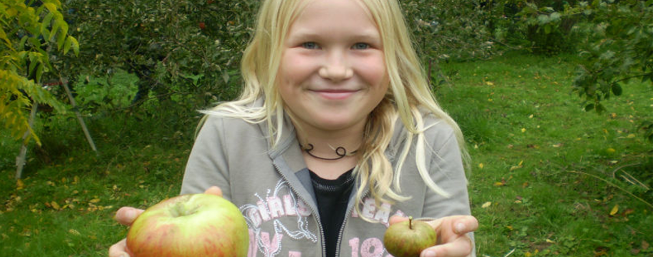 appleday.png