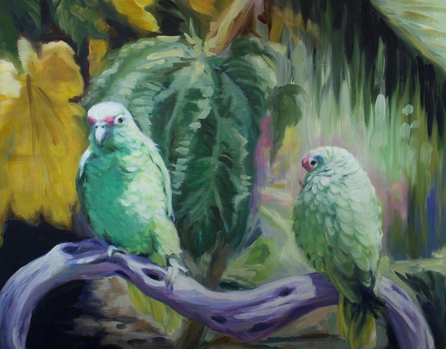 parakeets med.png