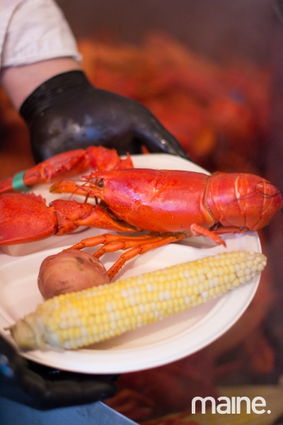 DDostie_LobstersontheSound2015__9503-62005-800-600-95-wm-right_bottom-100-mainelogopng.jpg