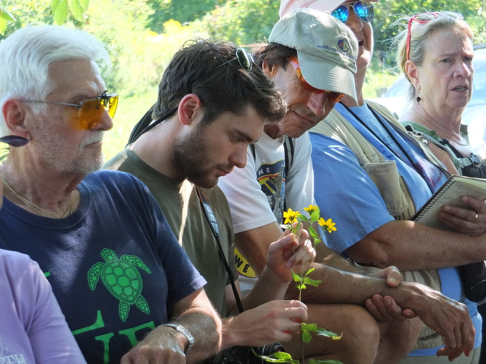 Community members learn to identify fall wildflowers on a walk with Chuck Hulse.
