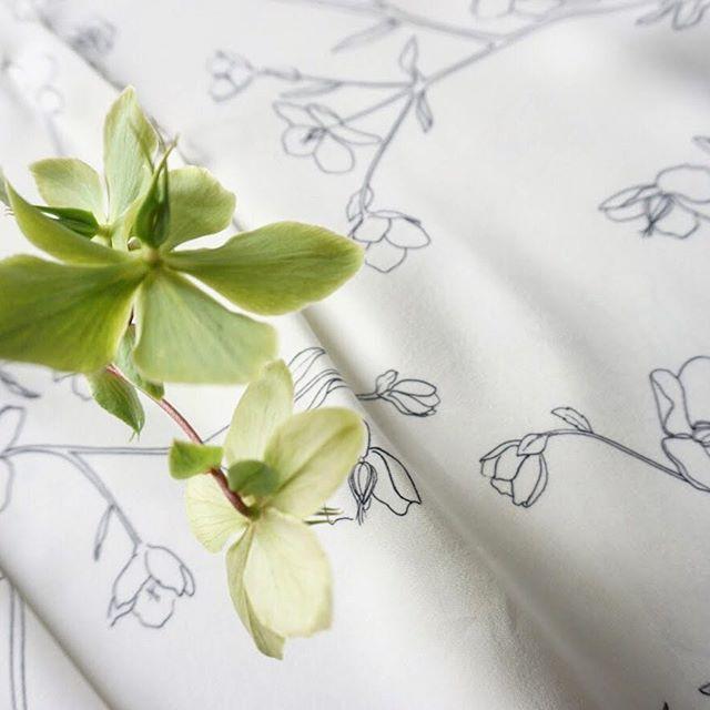 Hellebores capsule #comingsoon #oleandercollection 🌱🌱 . . . . . . . . #hellebores#inspiredbynature#fashionandflowers#botanicals#floralinspiration#prettythings#dailyforage#floralprint#followingflowers#nyfashion