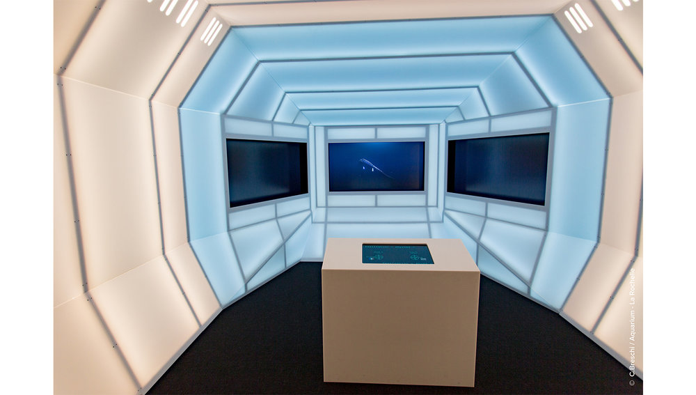 aquarium1-01-sport&culture-equipement&tertiaire-alterlab.jpg