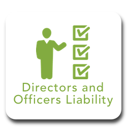 Directors and officers liability.png