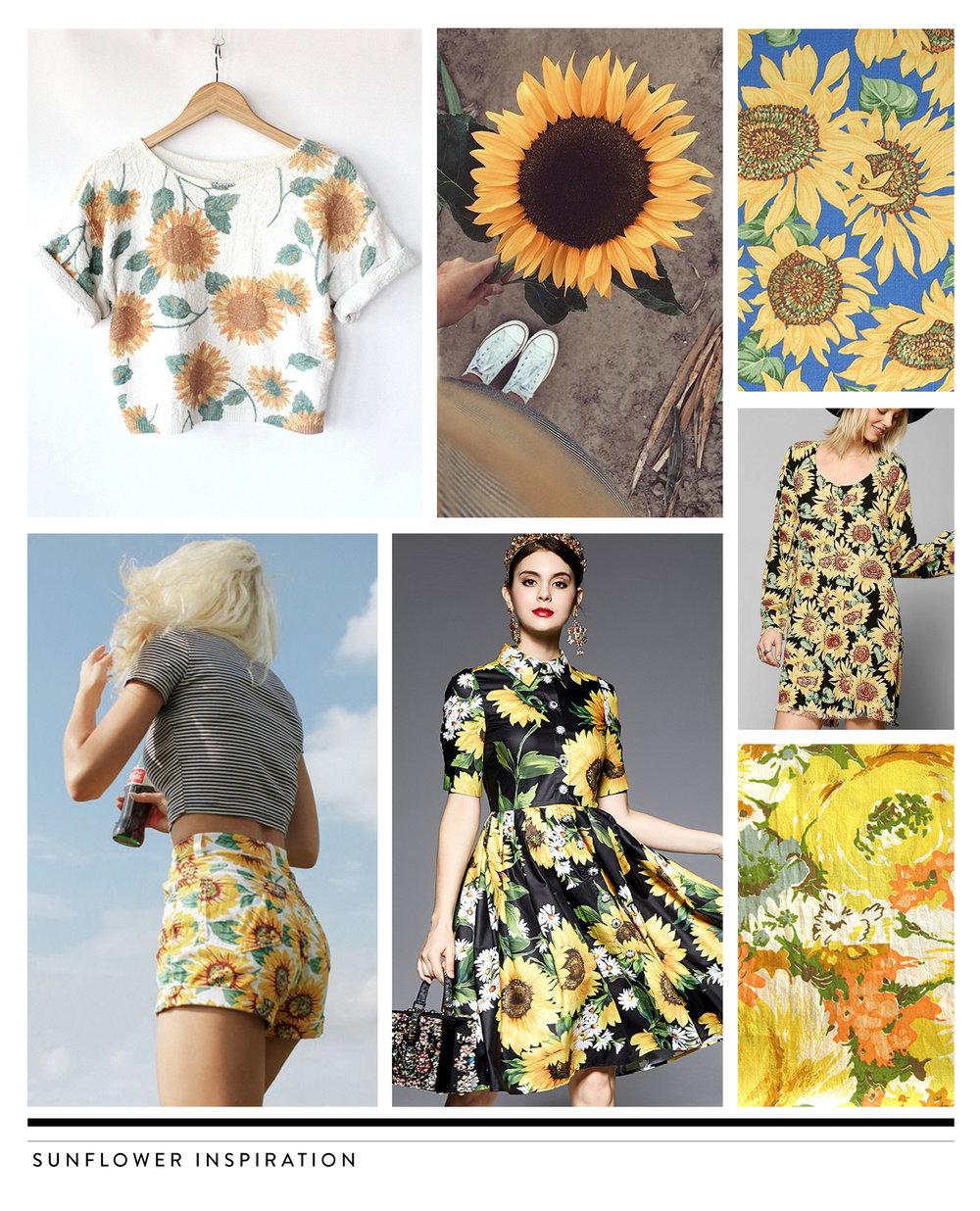 sunflower_trends.jpg