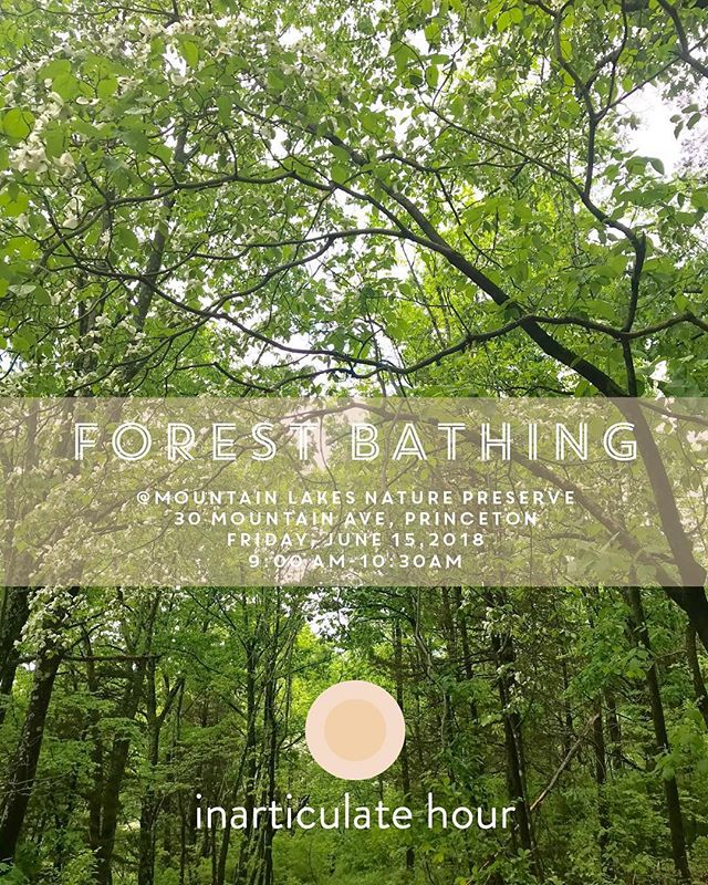 "🌳 s h i n r i n  y o k u - f o r e s t  b a t h i n g - e v e n t : Next forest bathing walk is this Friday! . 🌳June 15 @ 9:00 am - 10:30 am @📍Mountain Lakes Nature Preserve in Princeton.🌿 If you would like to join us please send us a message🍃hello@inarticulatehour.com  to sign up. . . . . ✏️ Please make sure to sign up for our inarticulatehour.com newsletter for future events and don't forget to follow us on Instagram @inarticulatehour 🌿 . . 🌳Japanese phrase Shinrin Yoku simply translates into English as ""Forest Bathing"" or ""Taking in the forest atmosphere"". When we've first come across this word and its meaning, we were once again fascinated by how Japanese culture has the tenacity to create and embrace these old concepts and make them new by making real sense of them. Scientifically too. Developed in Japan during the 1980s, ""Shinrin Yoku"" has become a cornerstone of preventive health care and healing in Japanese medicine. The health benefits of spending time under the canopy of a living forest have been scientifically studied and the compelling outcome reassures that if a person simply visits a natural area and walks in a relaxed way, there are calming, rejuvenating and restorative benefits to be achieved. Even hearing all this gives us a tremendous relief, especially when you're living in an area surrounded by the captivating beauty of mother nature full of rivers, creeks, trees, plants, and perennials with a Dolby stereo sound of a rich variety of birds. 🌳 See you in the forest. : )  ORGANIZERS: @gunizengur @denizasutayengur . 📸+ Illustration: @gunizengur  #inarticulatehour #mindfulness #meditation #slowliving#artofslowliving #creativity #lambertville #pause #pausevideoseries #payingattention #silent#silentmeditation #stillness #artofstillness #forestbathing #shinrinyoku #peace #princeton #stocktonmarket #lambertville #hunterdoncounty #hunterdoncreative #rootstoriverfarm #thefarmcookingschool"