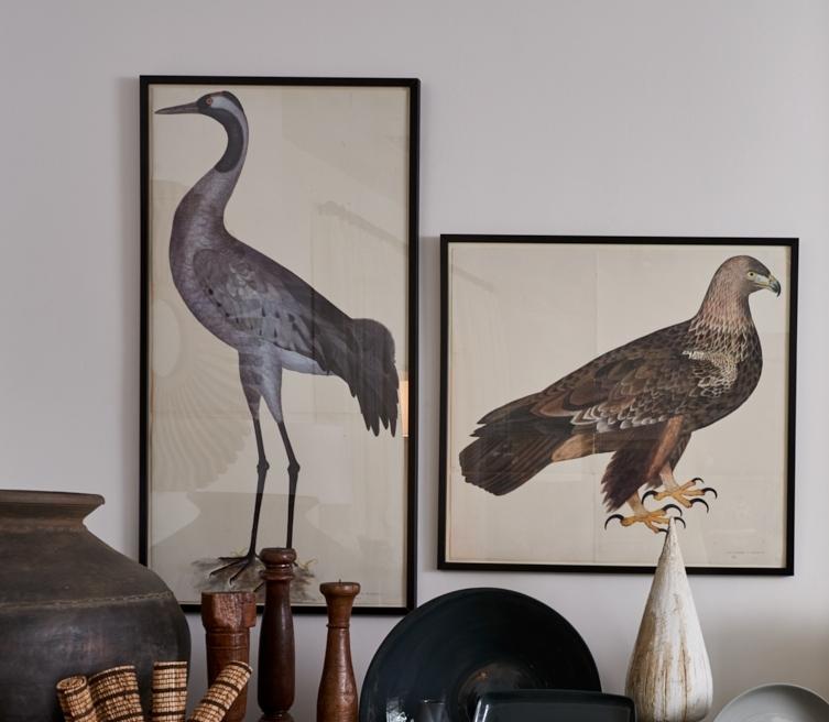 Olaf Rudbeck prints, Crane, $1200, Hawk, $950