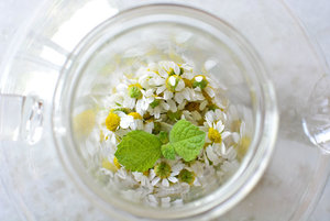chamomile-flowers-and-mint.jpg