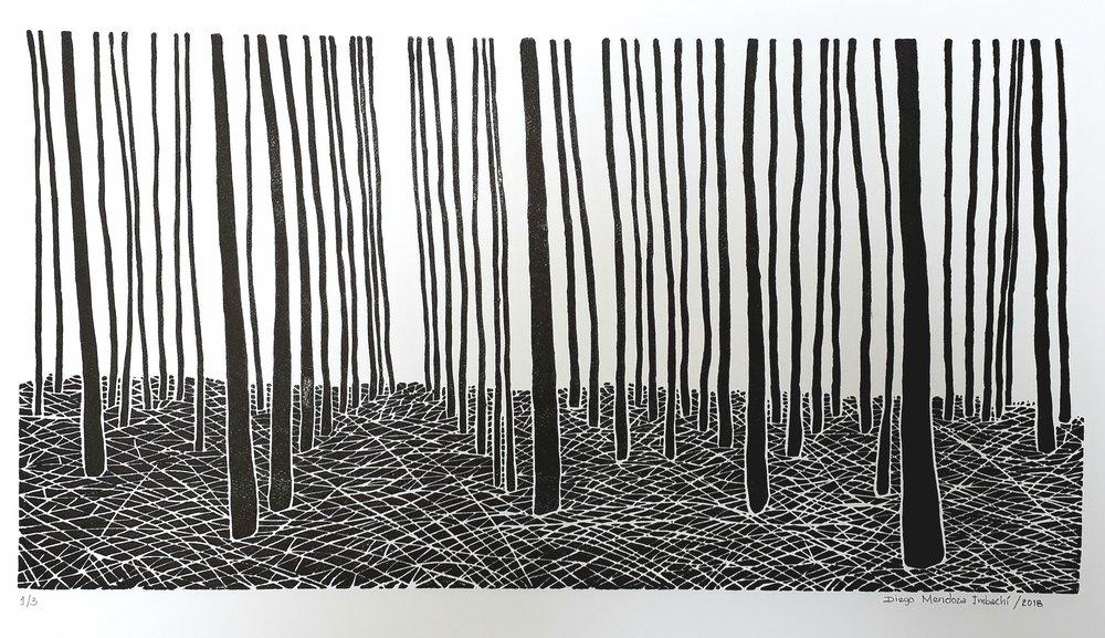 S.T (2018) - 33 x 63 cm - Xilografía, Serie de 5 / Xilography, Series of 5