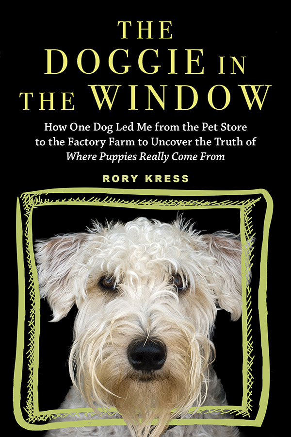 rory kress, book, dog, dogs, doggie in the window