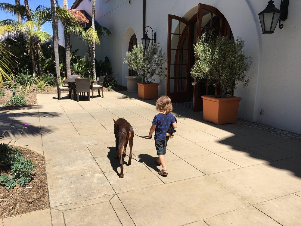 Exploring the Dog-friendly Bacara!