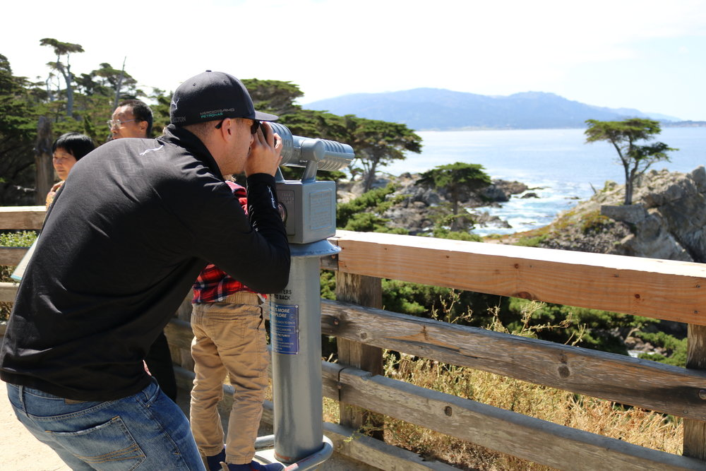 Checking Out The Lone Cypress Tree on 17 Mile Drive
