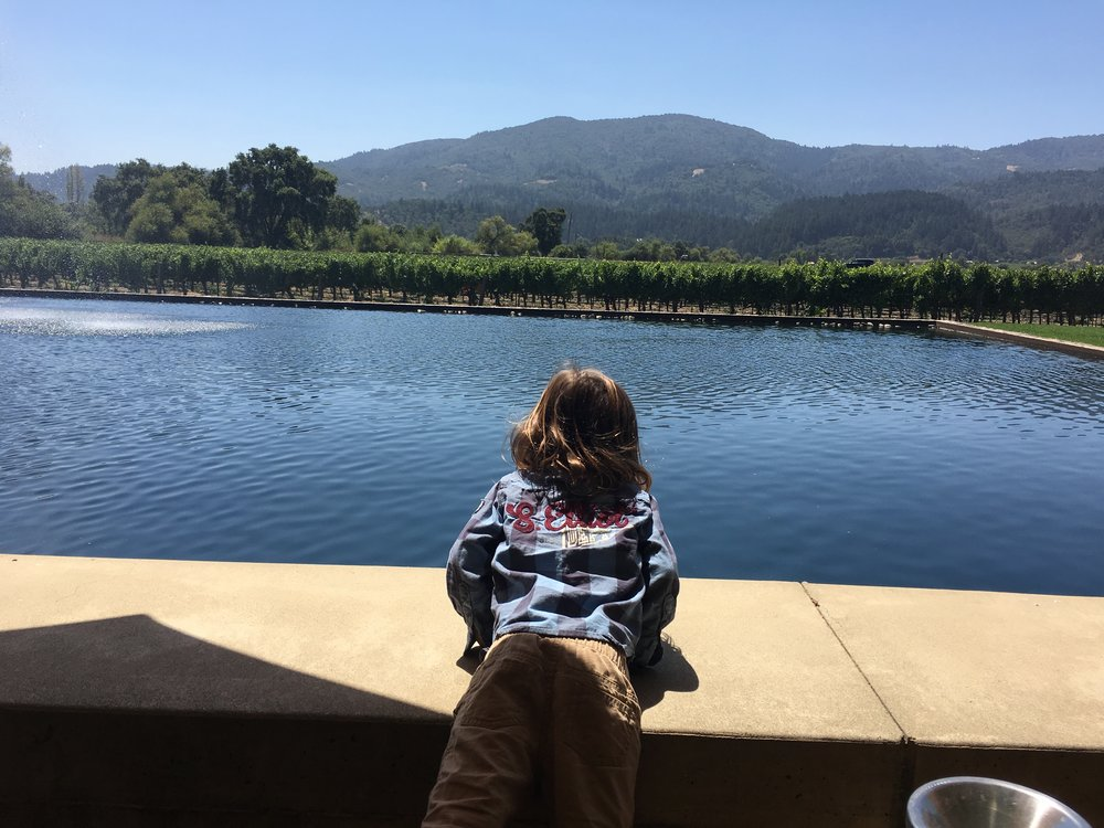 Great Views at Alpha Omega for an outdoor tasting!